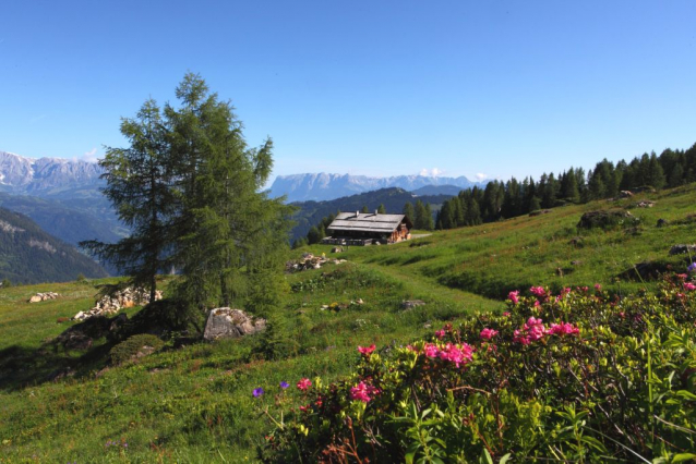What is Alpine Summer in SalzburgerLand?