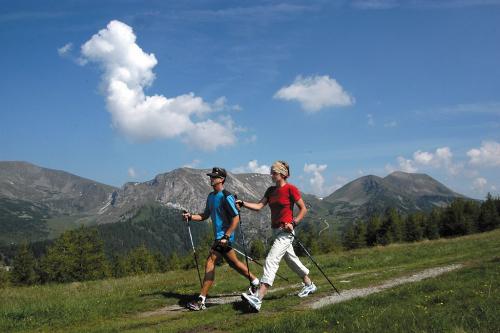 Nordic walking v Nockberge.