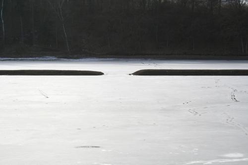 Zamrzlá Hostivařská přehrada.