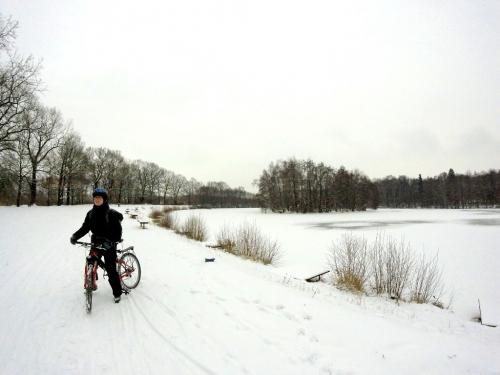 Milíčovský potok, Milíčovský les a Milíčovské rybníky v zimě.